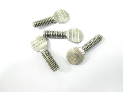 不锈钢扁头螺栓
